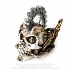 V73 Steam head Skull