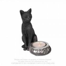 BLACK CAT T-LIGHT (V100)