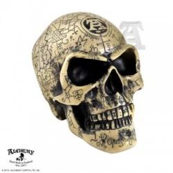 V1 Omega Skull