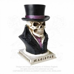 V35 COUNT MAGISTUS MONEY BOX